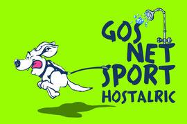 GosnetSport