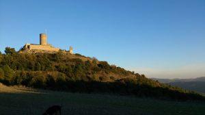 Castell Boixador2